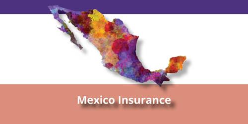 1Mexico Header
