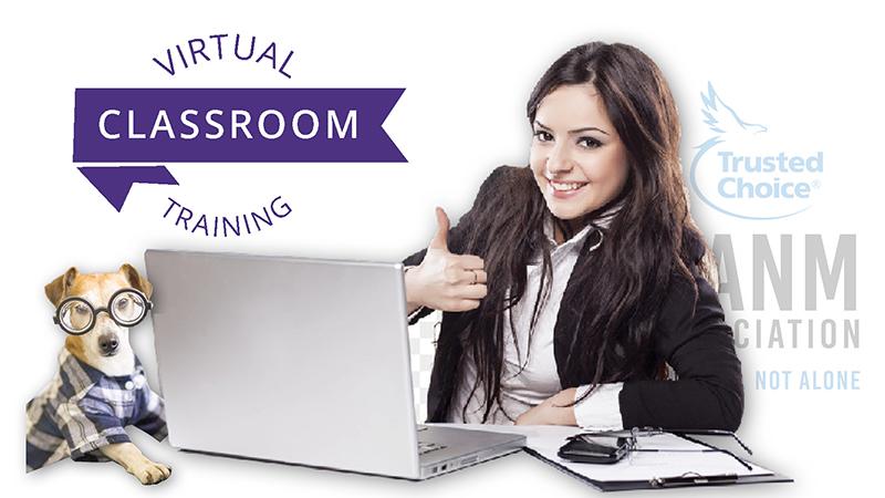 Virtual Classroom Training 2